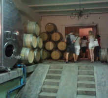 Private Cellar Tour