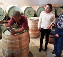 Van Ryn Cellar tour on Vine Hopper Wine Tour