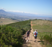 Vineyard Hiking Trail Stellenbosch